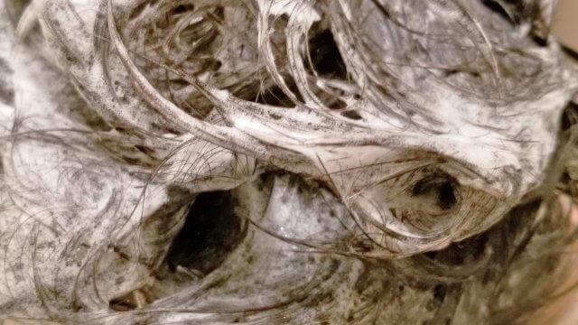 カウブランドシャンプー抜け毛